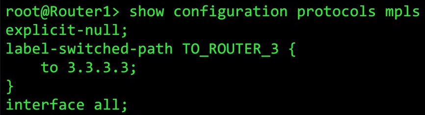 JUNOS ROUTERS: WHAT DOES THE INET 3 TABLE ACTUALLY DO