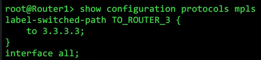 JUNOS ROUTERS: WHAT DOES THE INET 3 TABLE ACTUALLY DO? – NETWORK FUN